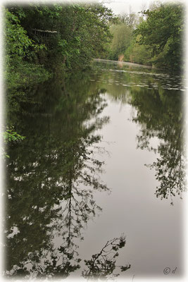 Das Naturschutzgebiet Swienswei bei Sittard (NL)