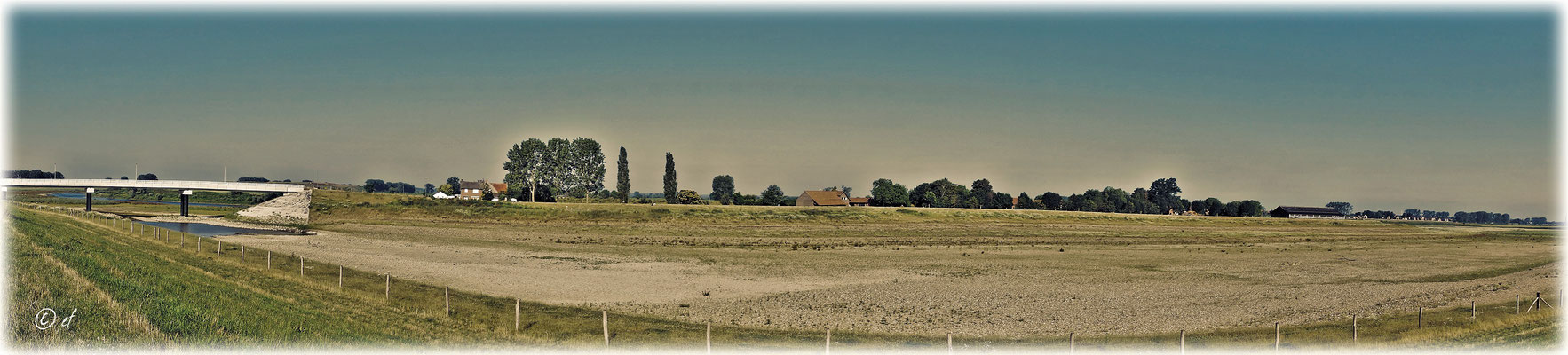 Panoramaaufnahme der renaturierten Maaslandschaft