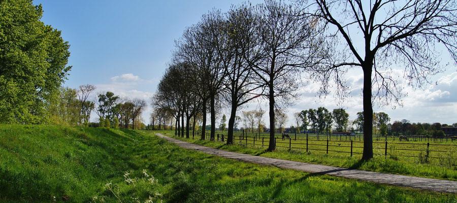 Der Fahrradweg Richtung KN03