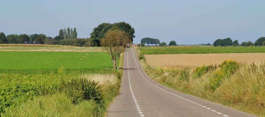 Die Landstraße nach Bingelrade