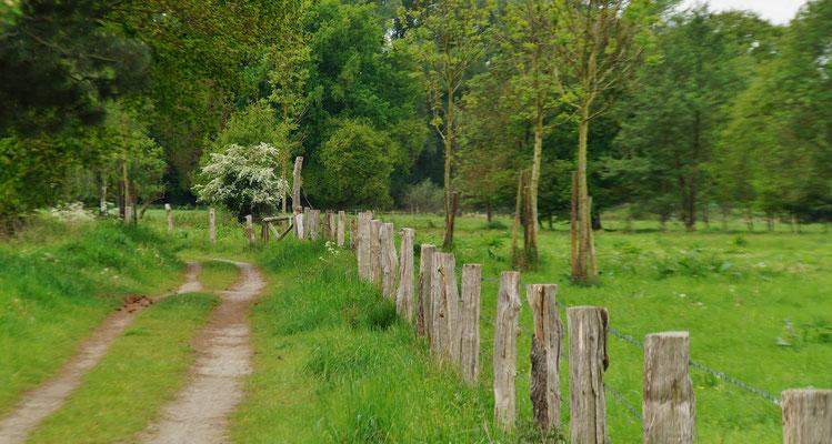 Auf dem Weg von Waldfeucht-Haaren --> Waldfeucht-Brüggelchen --> Waldfeucht