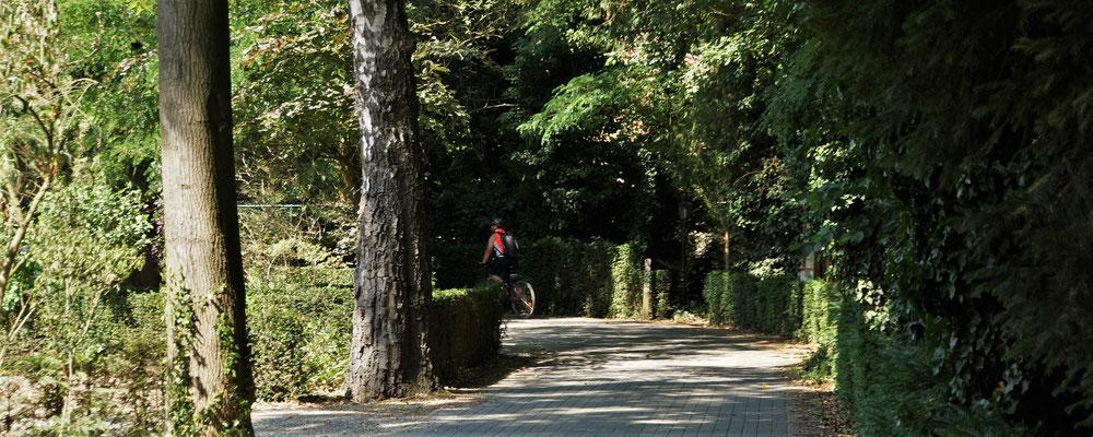 Nach Durchqueren der Einfahrt befindet man/frau sich direkt in der Parkanlage des Kasteels Wurfeld
