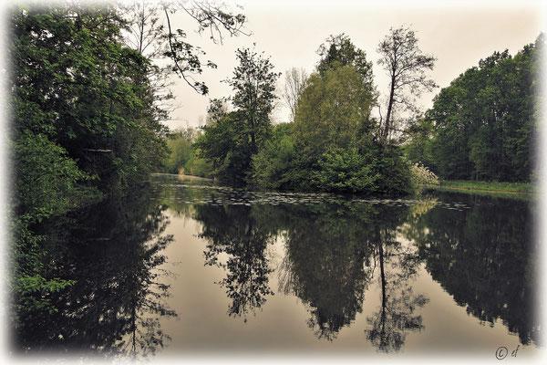 Eine herrliche Teichlandschaft