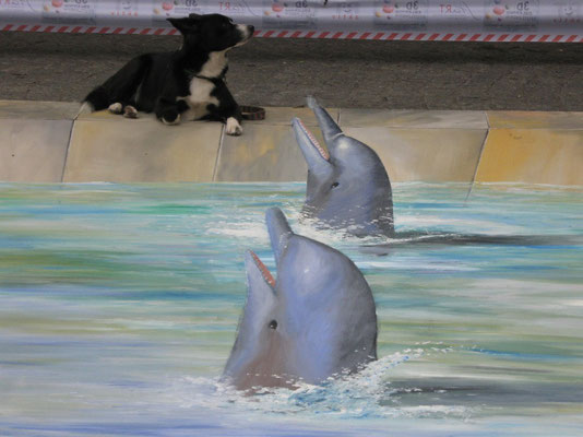 Paula mag keine Delphine