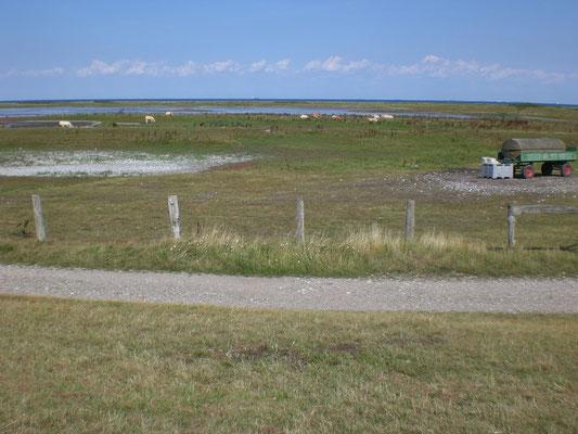 Naturschutzgebiet Grüner Brink