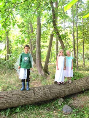 Nicht nur Zwerge, auch Elfen gibt's im Zwergenwald!