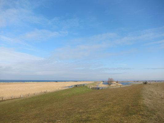 Strand von Bojendorf