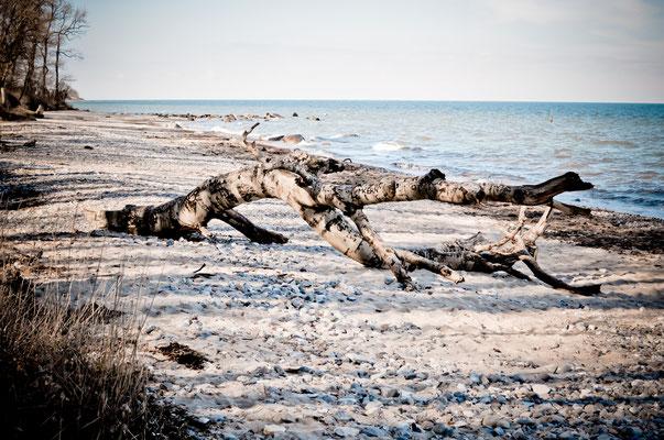 Strand von Katharinenhof. Foto: Maren Pokroppa