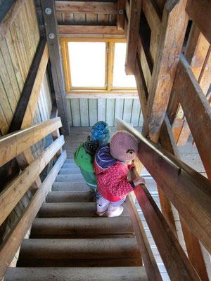 Aussichtsturm im Wasservogelreservat Wallnau