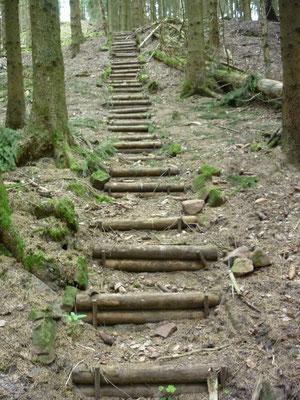 Treppe zum Wasserloch