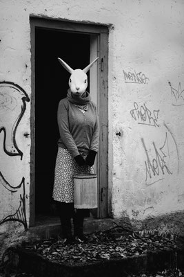 'the rabbit is back'