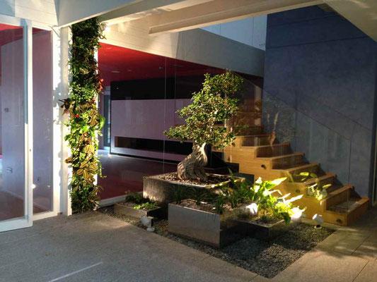 Dise o de jardines interiores nuevos jardines tienda for Imagenes de jardines interiores
