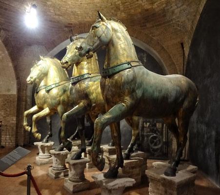 Die original Pferde