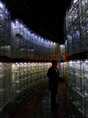 4500 Biergläser