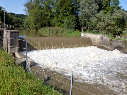 viel Wasser in der Gurk bei Launsdorf
