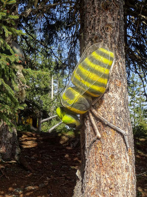 Wald Biene