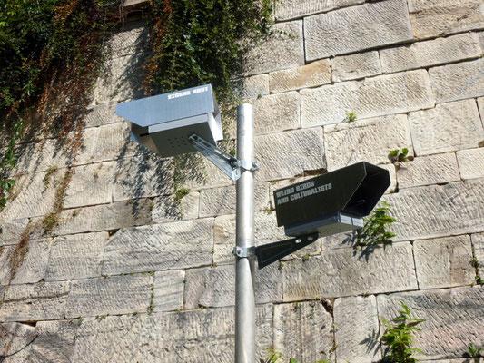 Nistkästen als Überwachungskamera