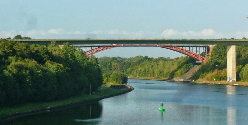 Fledermäuse Brücke bei Regensburg