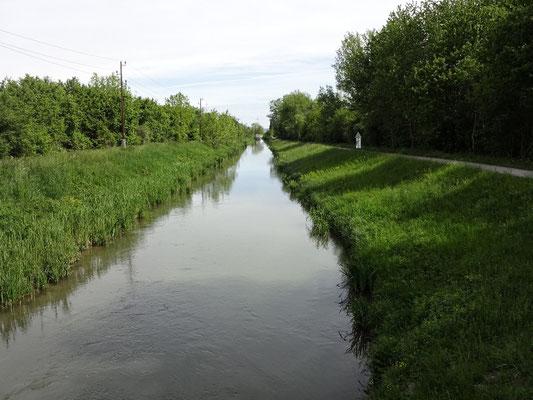 Wr. Neustädter Kanal