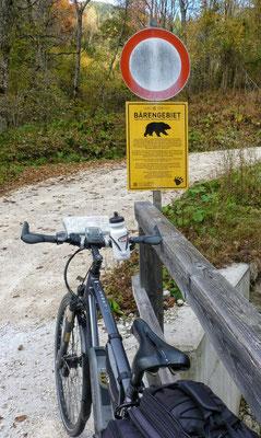 Achtung Bären!