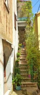 Begrünte Treppe