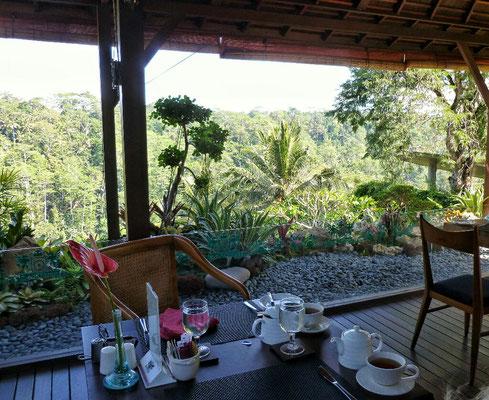 Beim Frühstück in der Black Penny Villa