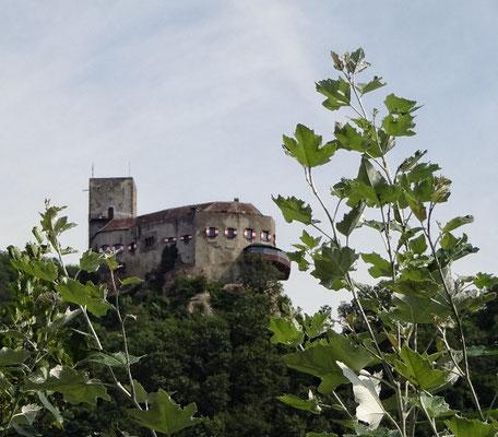 ...Burg