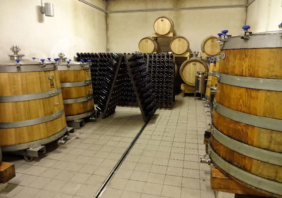 im Keller der Orange Weine