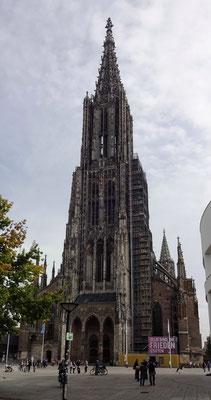 Dom zu Ulm