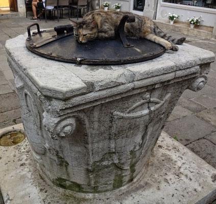 Warmer Brunnen