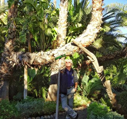 Baum Stütze