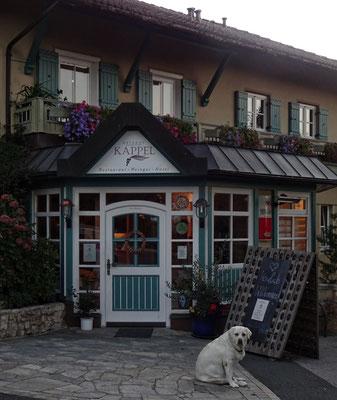 unser Hotel der Winzerhof Kappl