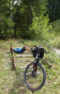 Schienenfahrzeug mit Selbstmörder