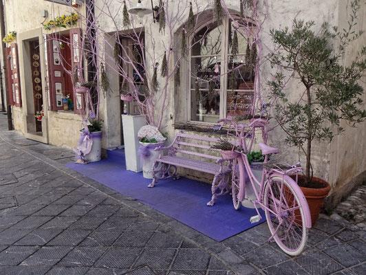 Lavendel Stadt Venzone