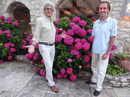 wer ist schöner - die Blumen oder die Männer?