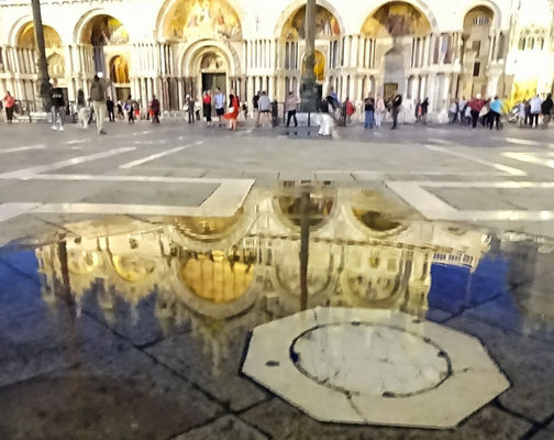 Spiegelung in der Marcus Pfütze
