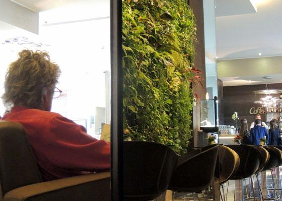 im Klimahotel grüne Wand