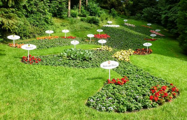 Der Bodensee in Blumen