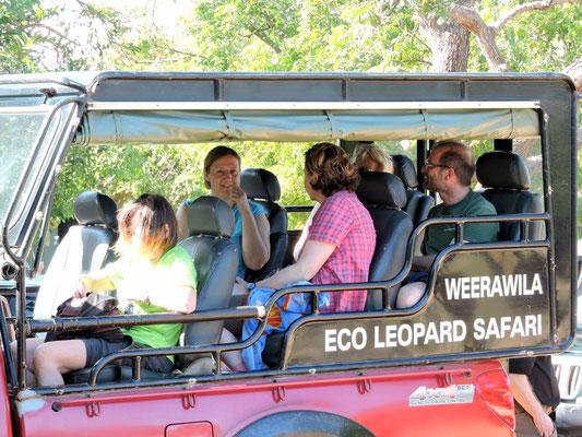 im Jeep auf Safari