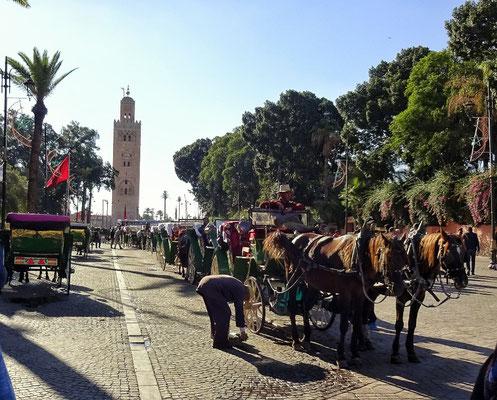Kutschen vor der großen Moschee