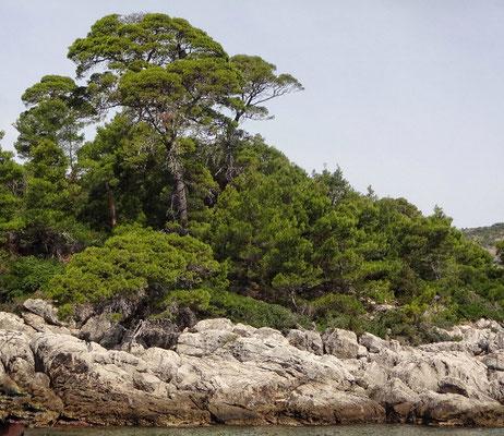 Naturschutzgebiet Insel Lokrum