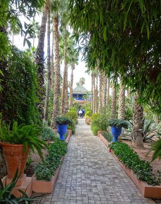 Majorelle Garten