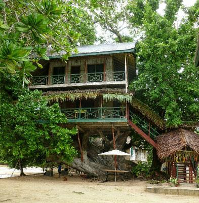 Baumhaus aus New Ireland