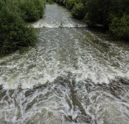Hochwasser der Schwarza