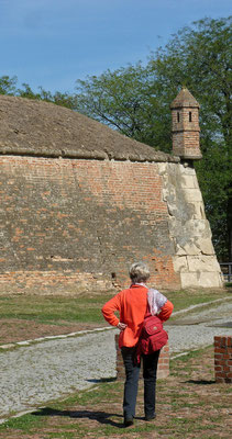 Die Festung Peterwardein