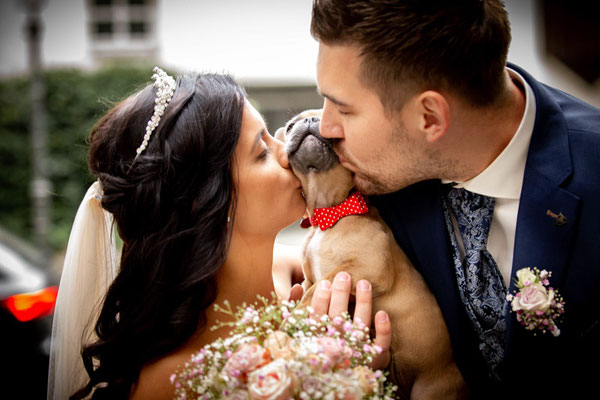Brautpaar küssen den Hund