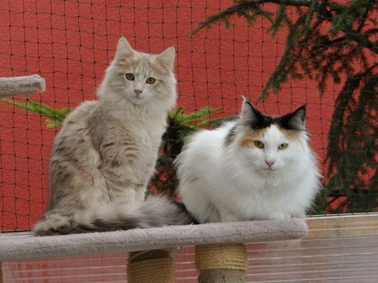 Yuna und Klecks :-)
