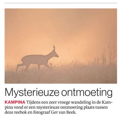 Mysterieuze ontmoeting, Brabants Dagblad