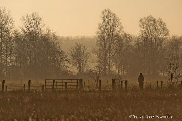 Eenzame wandelaar...