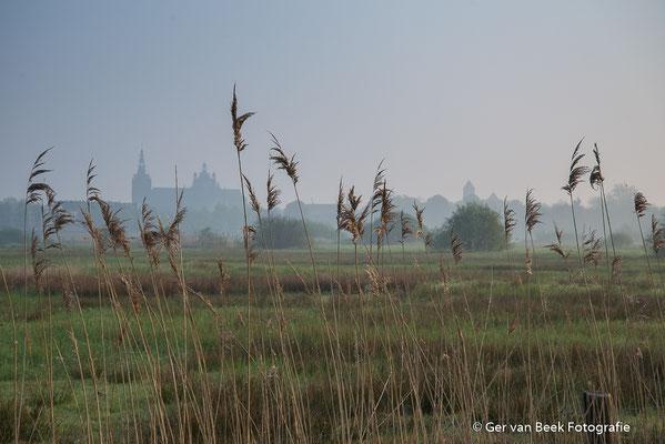 Zicht op 's Hertogenbosch